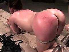 All Holes, BDSM, Bondage, Domination, Fetish, Ffmm, From Behind, Gangbang, Group Sex, Hardcore,