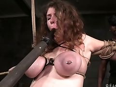 BDSM, Beauty, Big Tits, Bound, Cute, European, Horny, Redhead, Rough, Sex Toys,